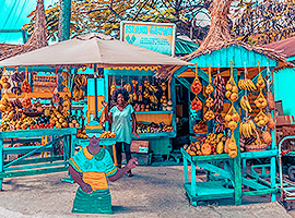Erlebe die farbenfrohe Karibik von ihrer besten Seite | sailwithus