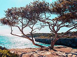Der Ausblick über das Mittelmeer ist einfach traumhaft | sailwithus