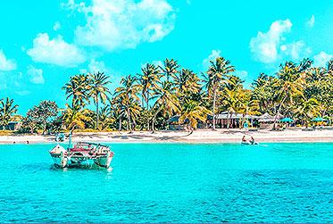 Unter Palmen den Segelurlaub genießen l sailwithus