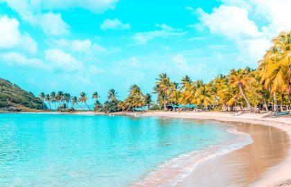 Runder Stand mit kleiner Beachbar, ideal zum Entspanne, schwimmen oder schnorcheln