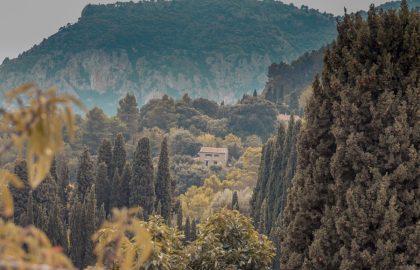 Einsame Häuser in Mitten der Natur Mallorcas, grün bewachsene Berge im Hintergrund
